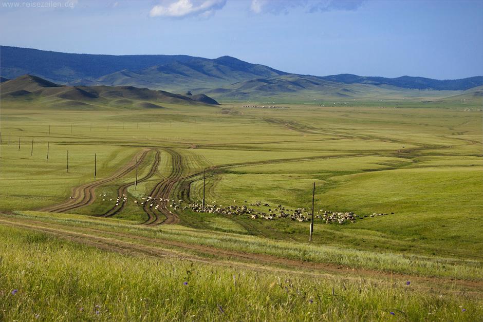 Bilder Mongolei in der Ferne Reisebericht Fotogalerie