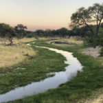 Botswana – Chobe Nationalpark, Makgadikgadi Pans & Moremi Game Reserve