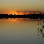Botswana – Westliches Okavango Delta & Sambesi Region (Namibia)