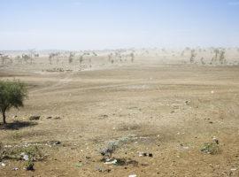 Klimawandel in Tansania