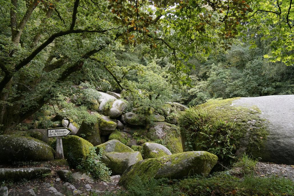 wilde Natur in der Bretagne