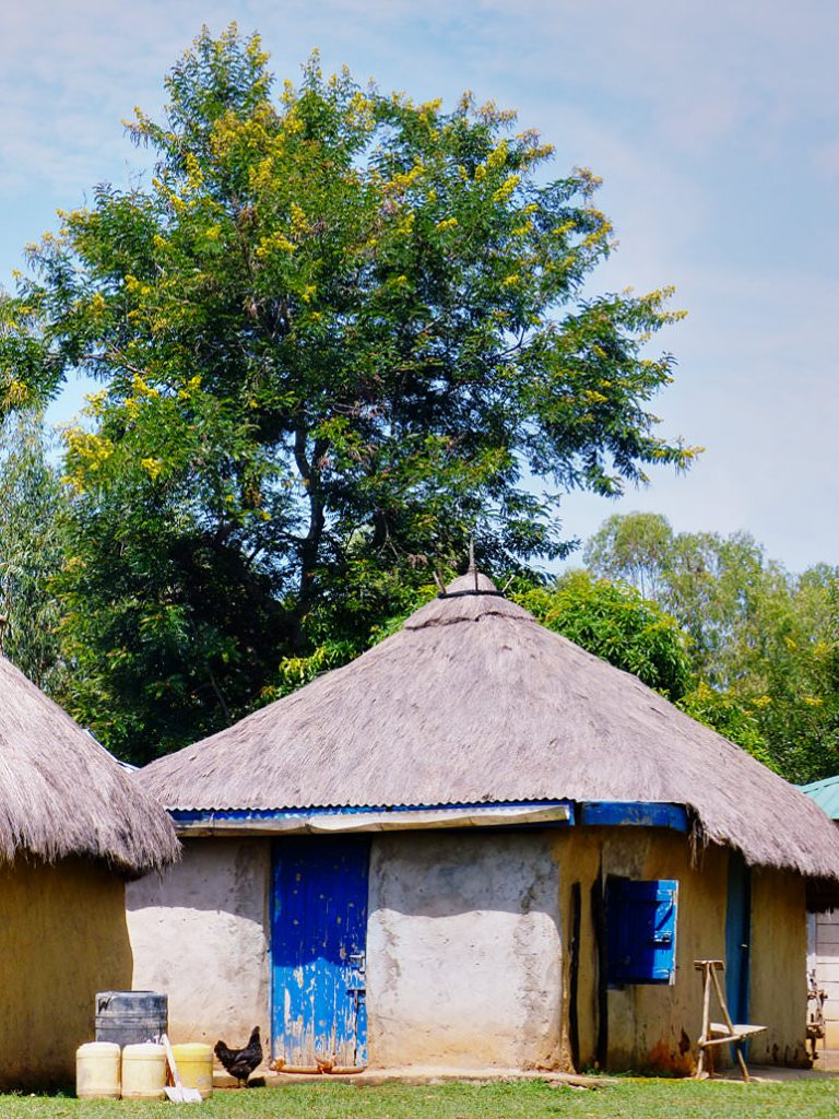Eco Tourismus