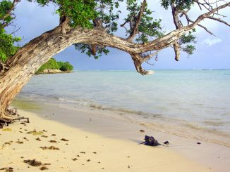 nachhaltig reisen Karibik