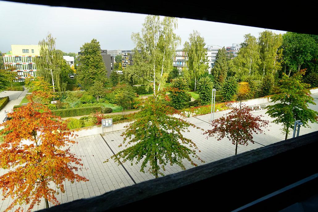 Blick aus dem Fenster Wälderhaus Hamburg
