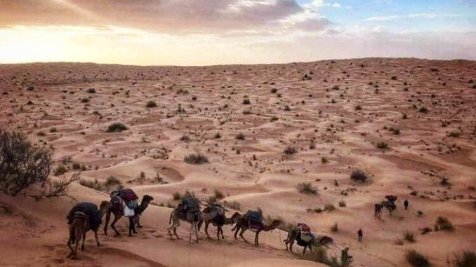 Tunesien Wüstentour